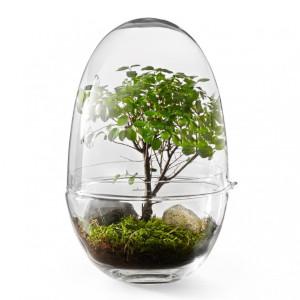 Växthus julklappstips