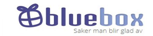 Billiga julklappar hos Bluebox