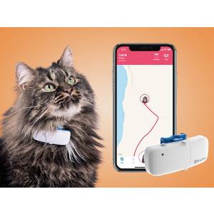 GPS till katt