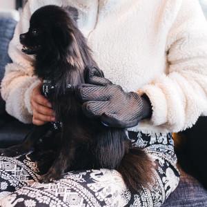Borsthandskar - Julklapp katt & hund