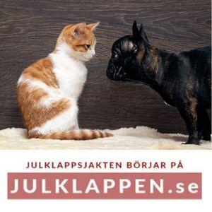 Husdjur - Julklappar till katt & hund